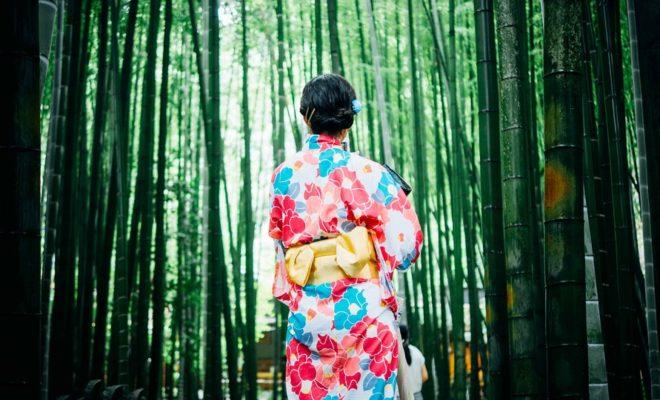 竹の木, 女の子, 着物, アウトドア, 木, 女性