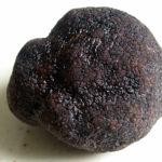 トリュフの種類や普通のきのことの違いは?味や香りの特徴は?