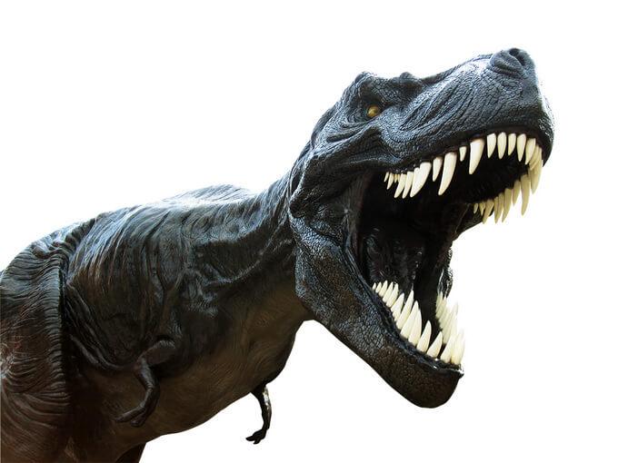 「恐竜どうぶつ園」公式サイト